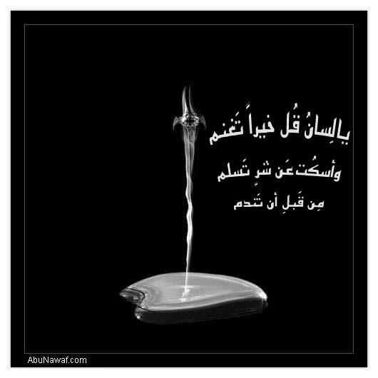 حكــــم وأمثال مصورة